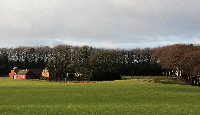 Visite au Danemark, le pays du bio