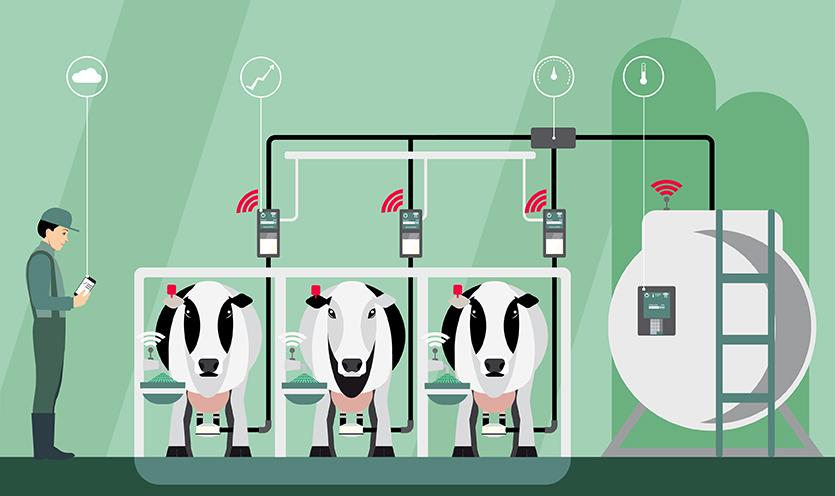 Tendances laitières