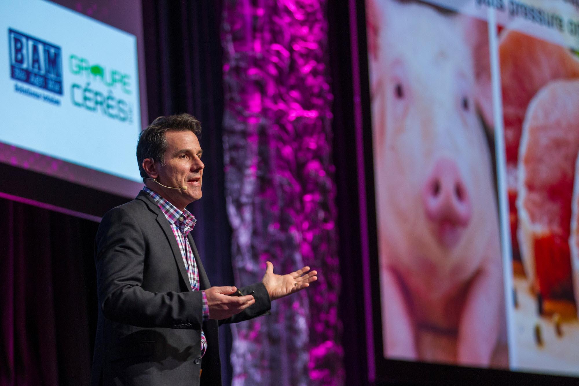 Optimisme prudent pour la filière porcine en 2017